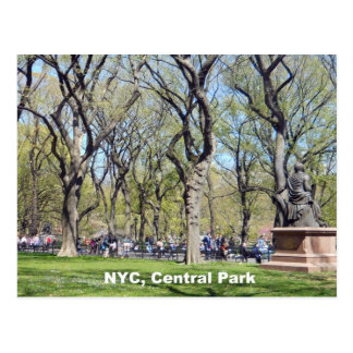 Central Park, New York City Postcard
