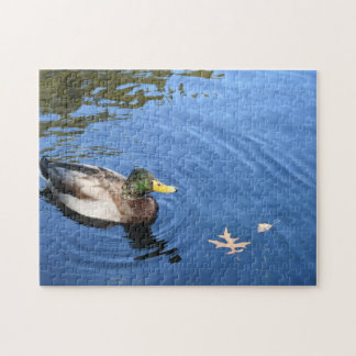 Central Park NYC Conservatory Water Mallard Duck Jigsaw Puzzle