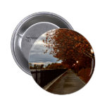 Central Park NYC in Autumn Buttons