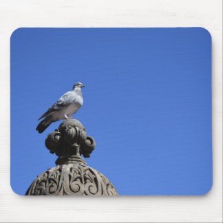 Central Park Pigeon Blue Sky New York City Bird Mouse Mat