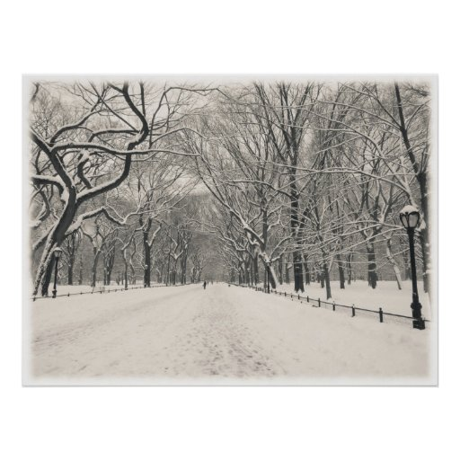 Central Park - Poet's Walk - New York City Poster