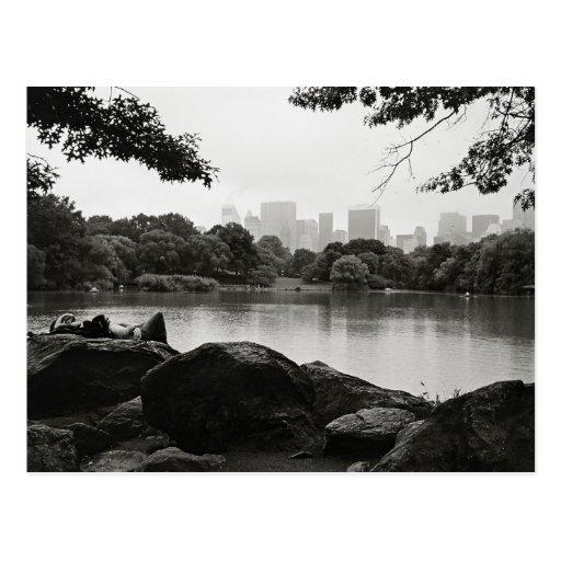 Central Park Postcard Post Card