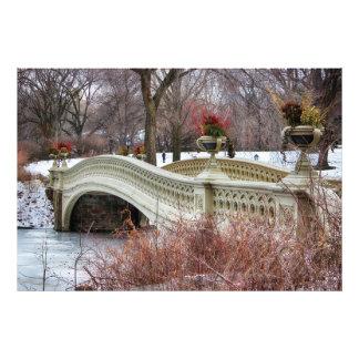 Central Park's Bow Bridge Photo