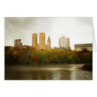 Central Park Skyline New York City Cards