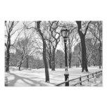 Central Park Snowfall B&W Photo Art