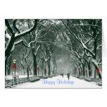 Central Park Snowy Path Holidays