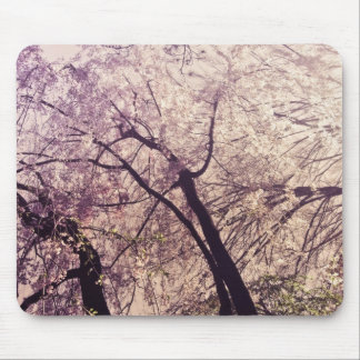 Central Park Spring Trees Mouse Pad