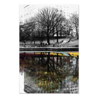 Central Park Tree Reflection Photo