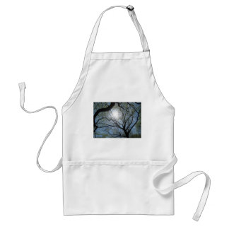 Central Park trees, NYC.JPG Standard Apron