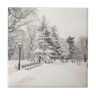 Central Park Winter Path - New York City Tile