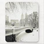 Central Park Winter - Snow on Bow Bridge