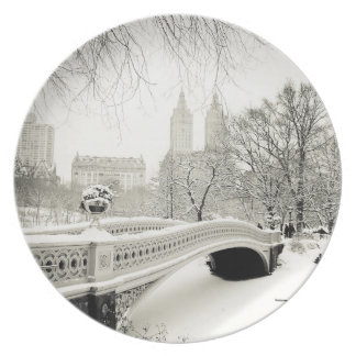 Central Park Winter - Snow on Bow Bridge Plate