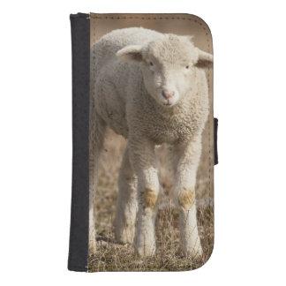 Central Pennsylvania, USA,Domestic sheep, Ovis Samsung S4 Wallet Case