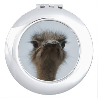 Central South Africa, African Ostrich, Close-up Makeup Mirror