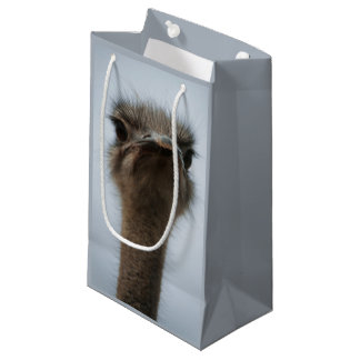 Central South Africa, African Ostrich, Close-up Small Gift Bag