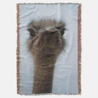 Central South Africa, African Ostrich, Close-up Throw Blanket