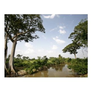 Central Togo, West Africa. Postcard