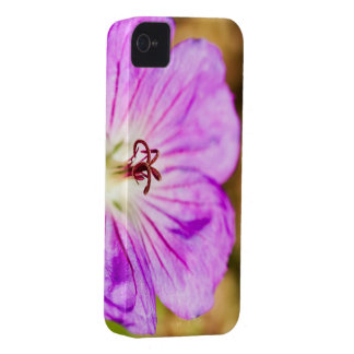 centre of a beautiful stormy past Case-Mate iPhone 4 case