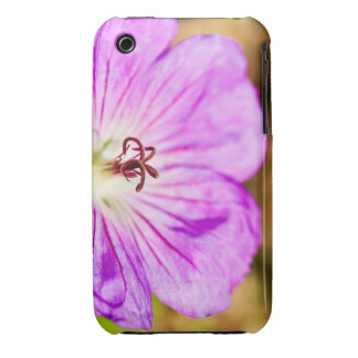centre of a beautiful stormy past iPhone 3 Case-Mate cases
