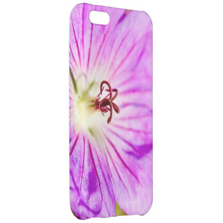centre of a beautiful stormy past iPhone 5C cover