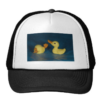 Ceramic Ducks Hat