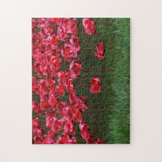 Ceramic Poppies Puzzle/Jigsaw Jigsaw Puzzle
