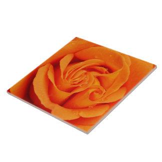 ceramic tile Orange rose flower trivet or box