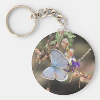 Ceraunus Blue Butterfly Basic Round Button Key Ring