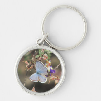 Ceraunus Blue Butterfly Keychain