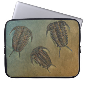 Ceraurus Fossil Trilobite Computer Sleeves