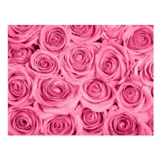 cerise pink roses elegant pattern by healing love postcard