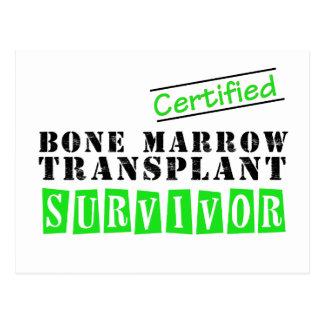 Certified Bone Marrow Transplant Survivor Post Cards