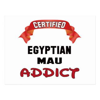 Certified Egyptian Mau Addict Postcard