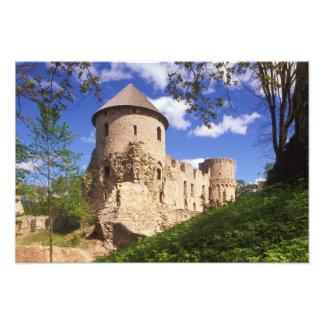 Cesis Castle in central Latvia. Photo Print