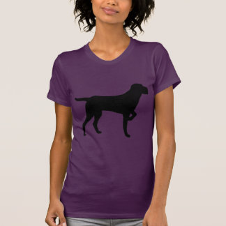 Cesky Fousek T-shirts