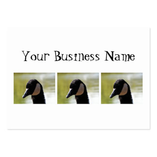 CGF Canada Goose Face Business Cards