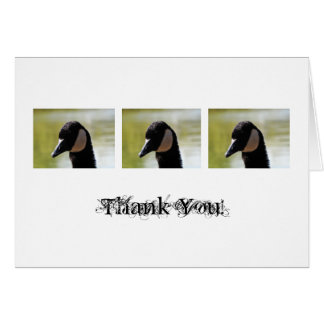 CGF Canada Goose Face Greeting Cards