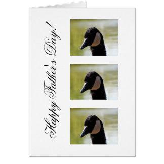 CGF Canada Goose Face Cards