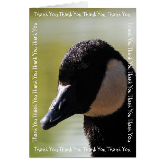 CGF Canada Goose Face Greeting Card