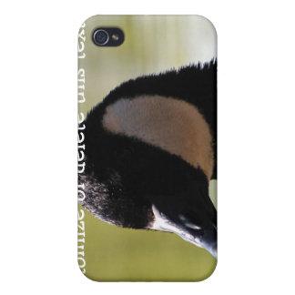 CGF Canada Goose Face iPhone 4/4S Case