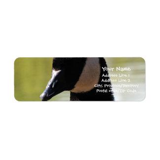 CGF Canada Goose Face Return Address Label