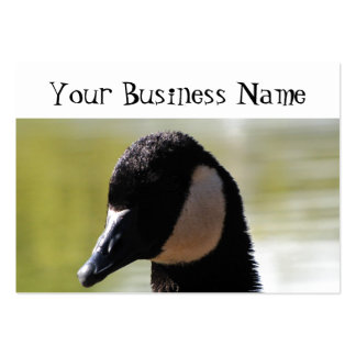 CGF Canada Goose Face Pack Of Chubby Business Cards