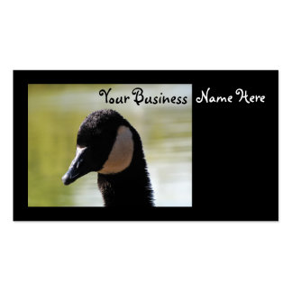 CGF Canada Goose Face Pack Of Standard Business Cards