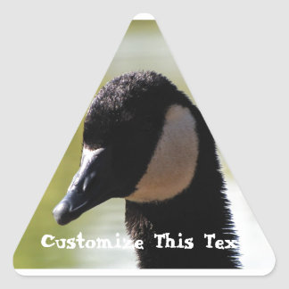 CGF Canada Goose Face Stickers