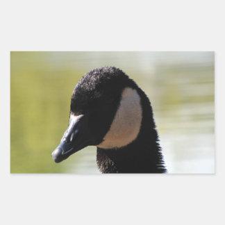 CGF Canada Goose Face Rectangular Sticker