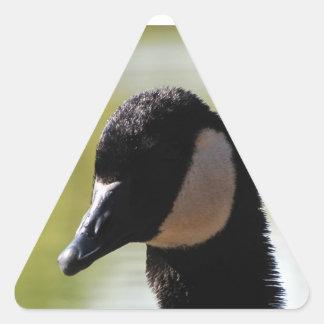 CGF Canada Goose Face Triangle Sticker