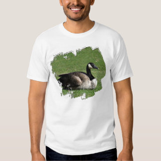 CGR Canada Goose Resting Shirt