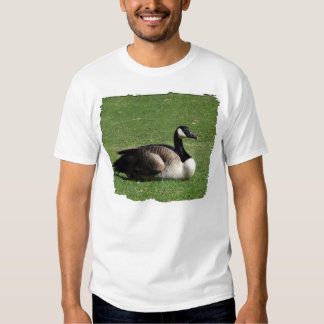 CGR Canada Goose Resting Tshirt