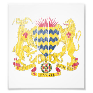 Chad Coat Of Arms Photo