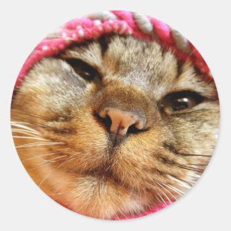 Chad of pink hat round sticker